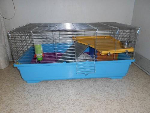 cage de quarantaine ok.jpg