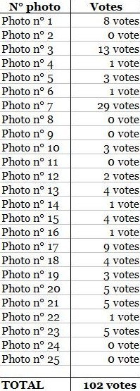 résultat vote.jpg
