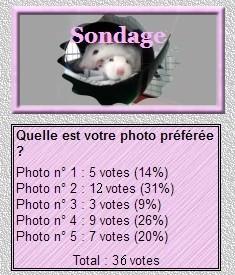 résultation concours blog.jpg