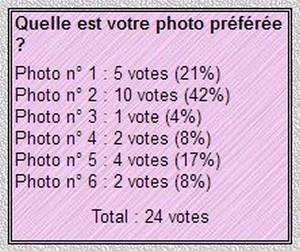 résultat concours photos les ratounes.jpg