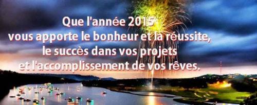 carte-bonne-annee-2015r.jpg