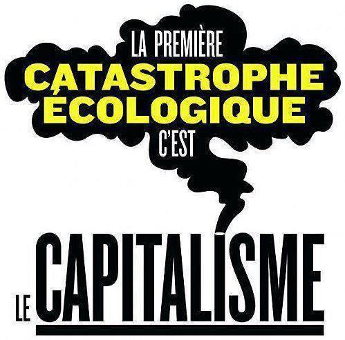 catasecolecapit.jpg