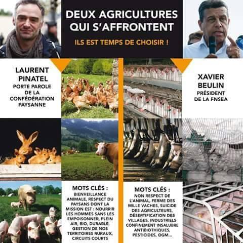 agriculture45.jpg