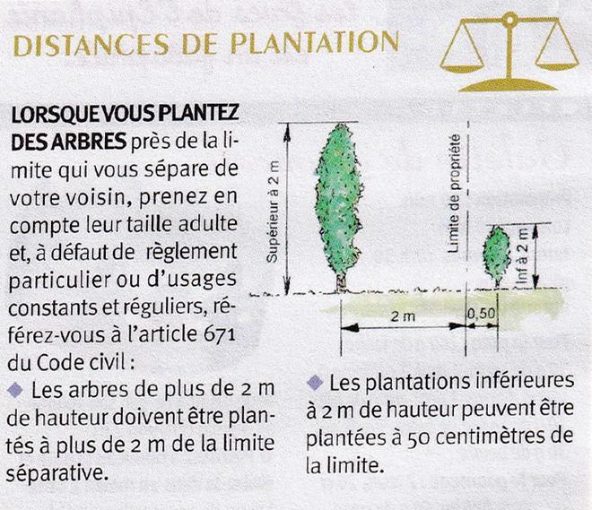 Distance de plantation.jpg