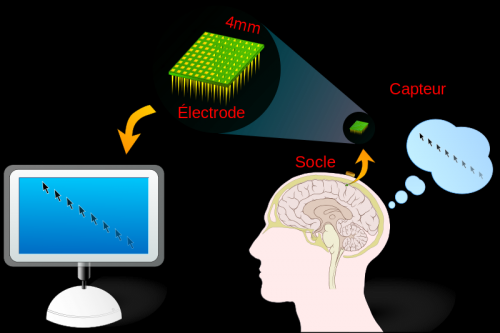 brain interface machine.png