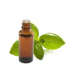 huile essentielle de basilic.jpg