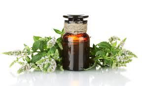 huile essentielle de menthe poivrée.jpg