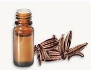 huile essentielle de carvi.jpg