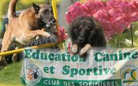 Club Education Canine ,Les Sorinières