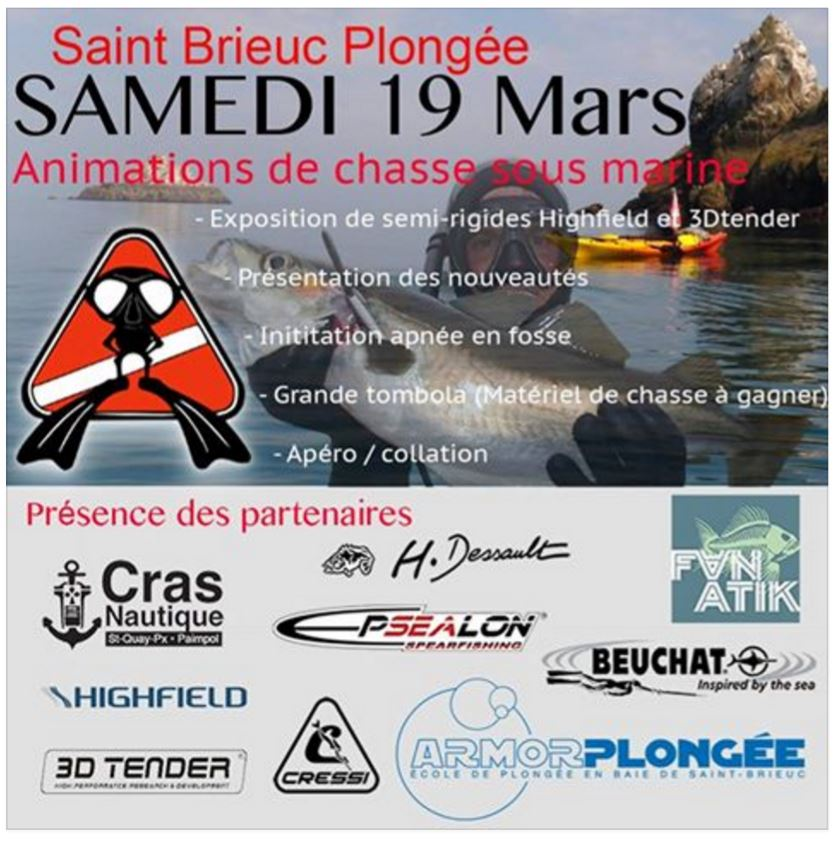 https://static.blog4ever.com/2012/03/678268/2016-Affiche-saint-brieuc-plong--e.JPG