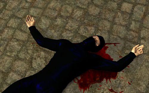 mort du ninja du jeu