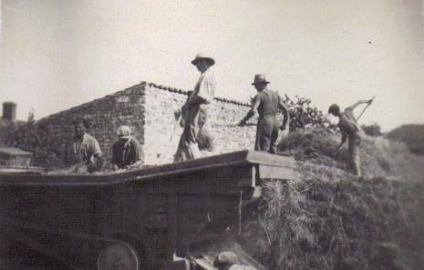 Du pignon à la batteuse ( famille Debeuf 1945)