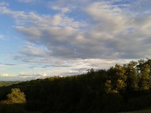 ciel F2.jpg
