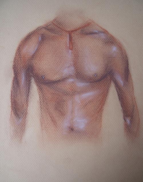étude corps humain sanguine1.JPG