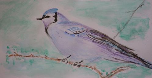 oiseau 1 daulat.jpg