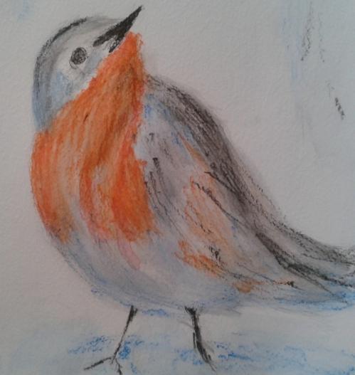 oiseau 3 daulat.jpg