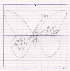 dessin papillon dans carré.jpg