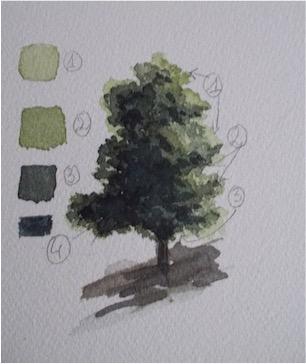arbre 3 verts.jpg