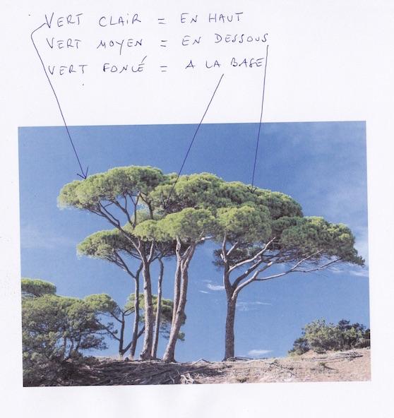 3 verts arbre.jpg