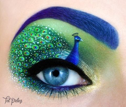 Peacock--talpeleg_0.jpg