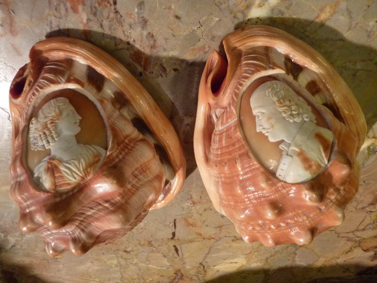 ob_f30d5e_camees-coquillages-italie-19eme-siecl.JPG