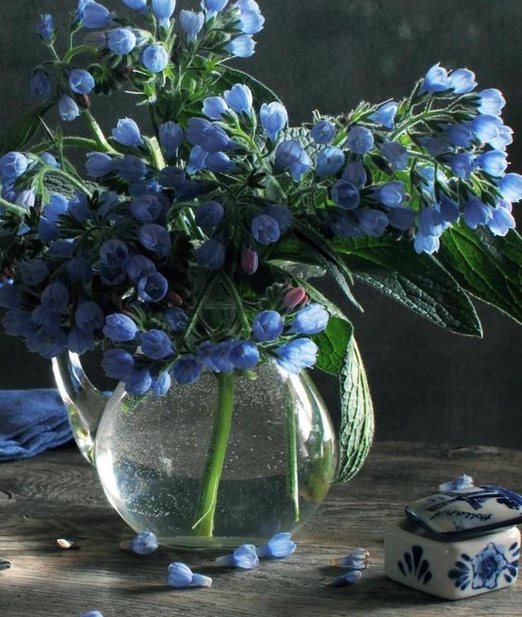 vase lumiere fleurs bleues 2.jpg