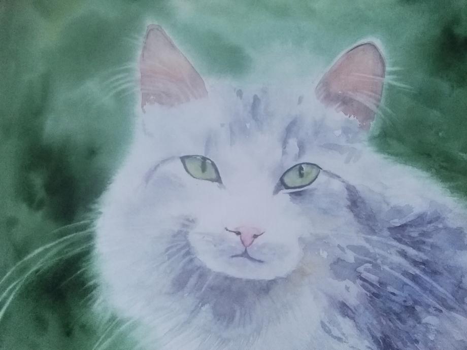 chat 2 brindille.jpg