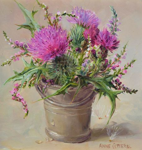 cotterill_scottish-thistle.jpg