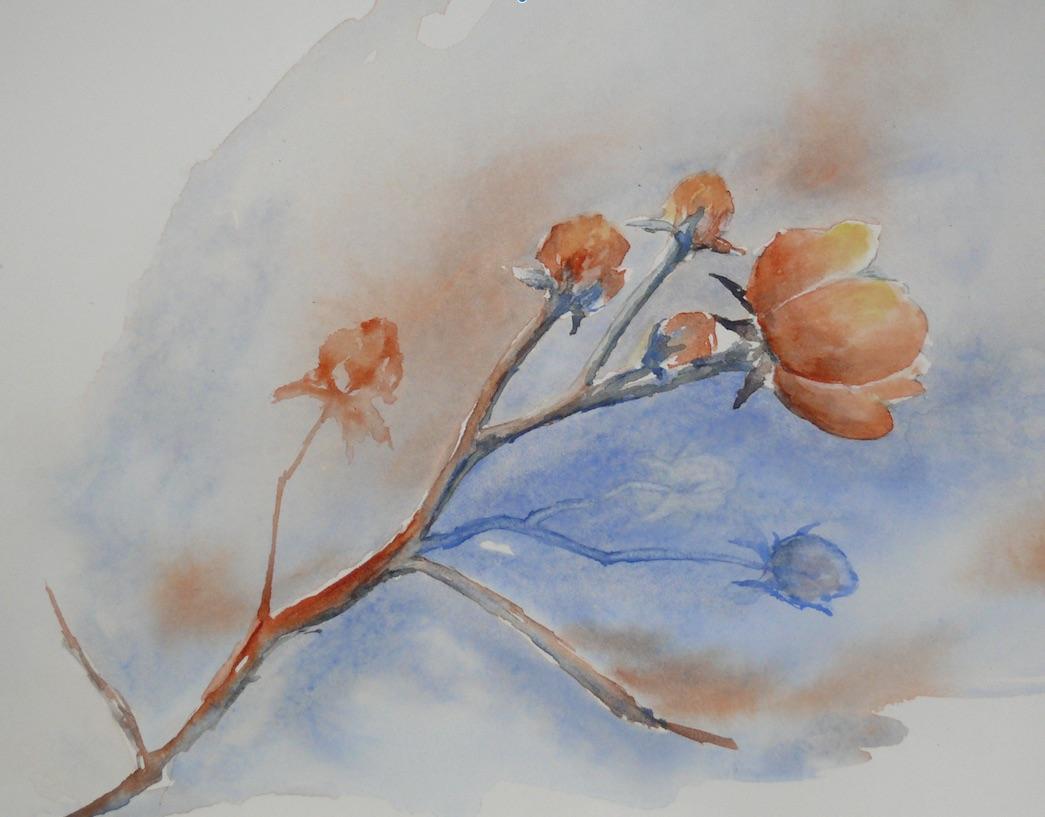 nega fleur ludine 3.jpg