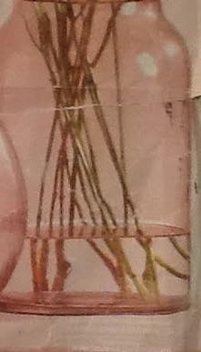 branches dans le vase.jpg
