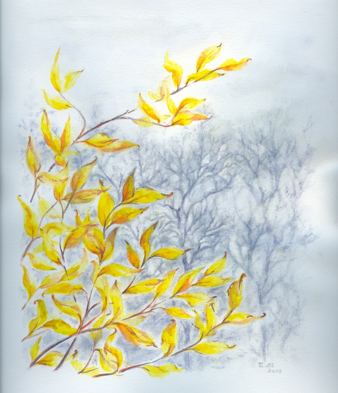 brume d'automne.jpg