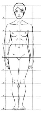 mesures dessin femme.jpg