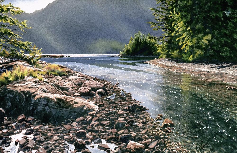 Tidal-Stream.st.jpg