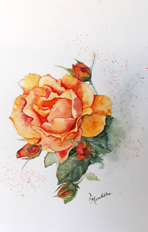 Rose 2 (19).jpg