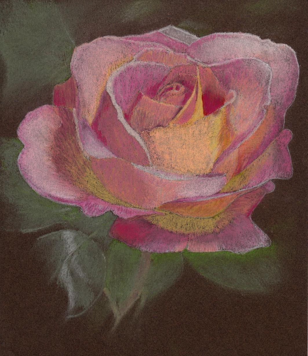Rose rose pastel.jpg