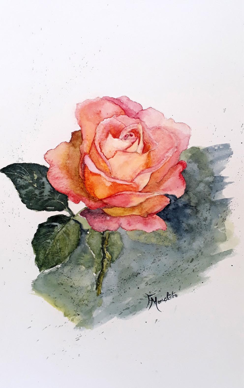 Rose (AQUA.jpg