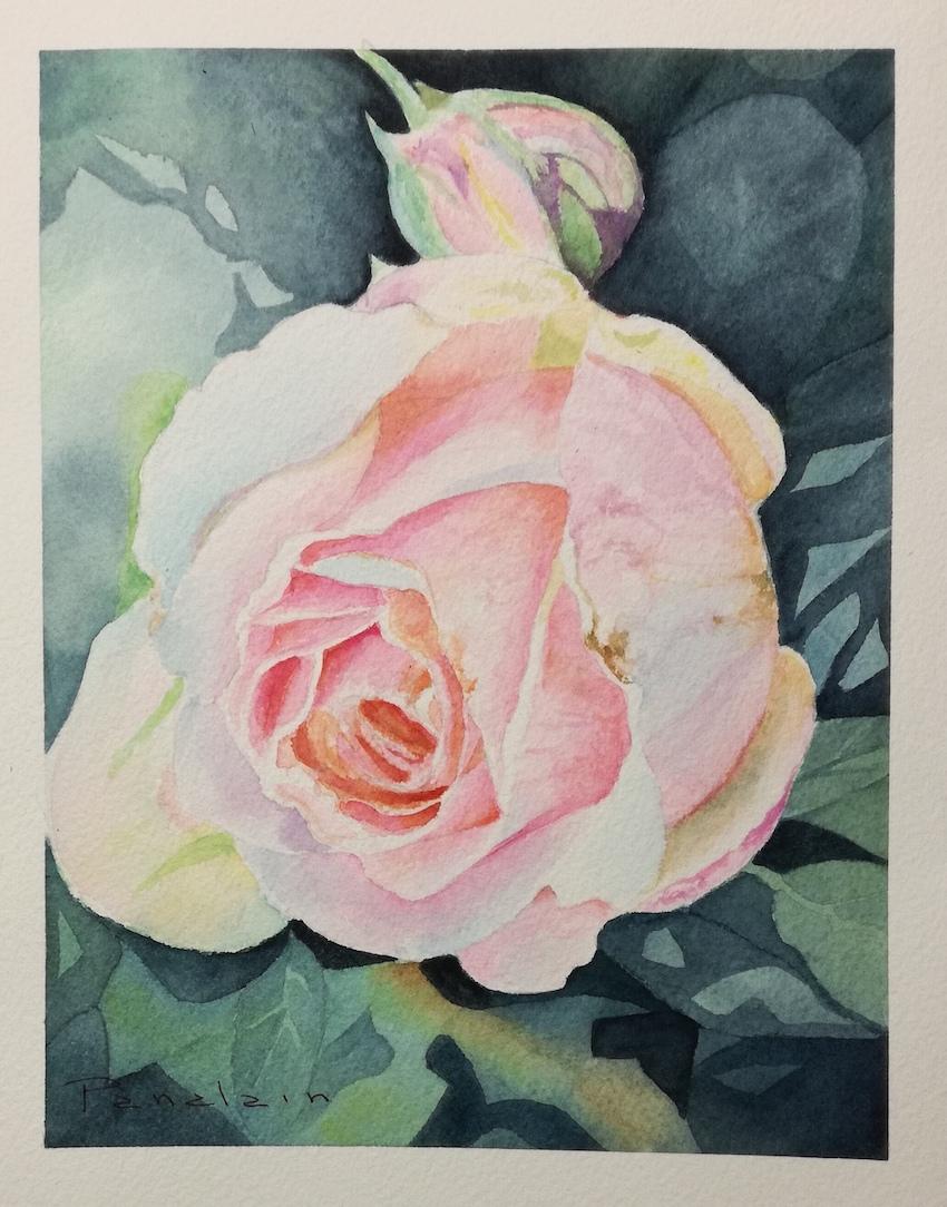 rose pale pana.jpg
