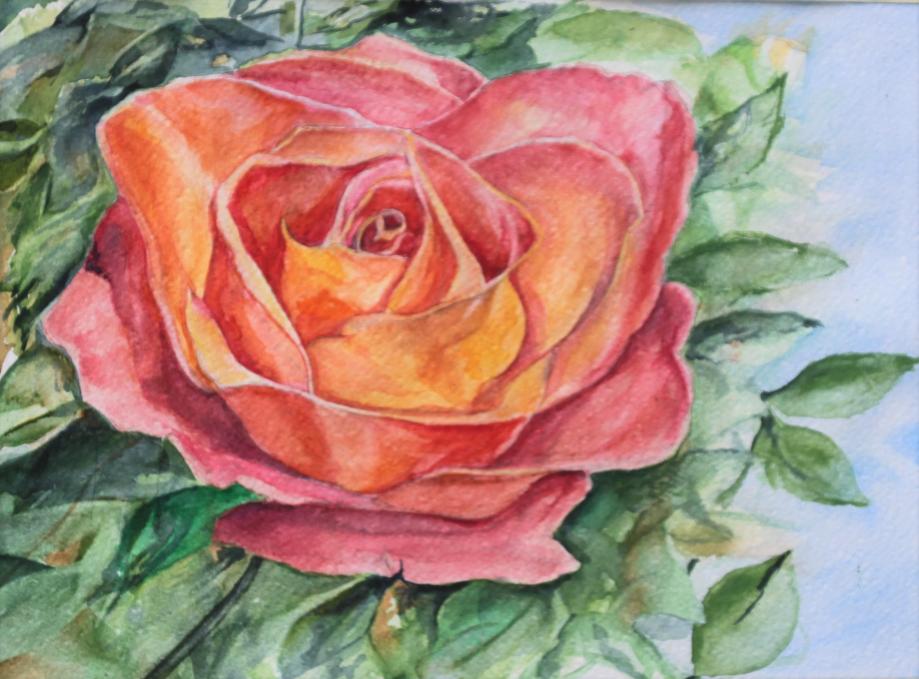 rose stam.jpg