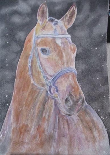 cheval 2 thi tri