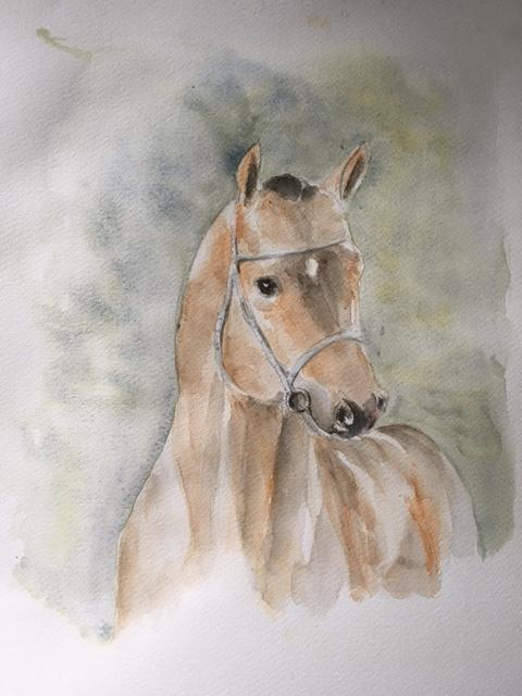 cheval agnes