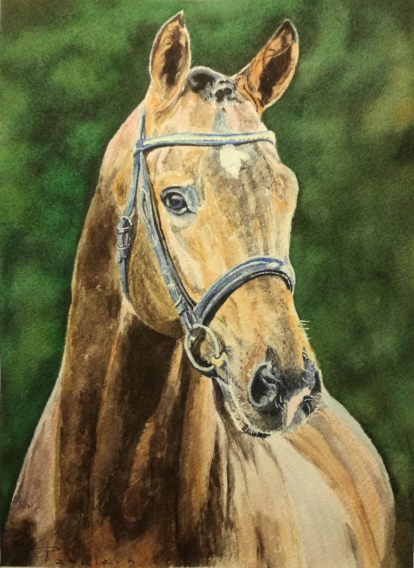 cheval alain