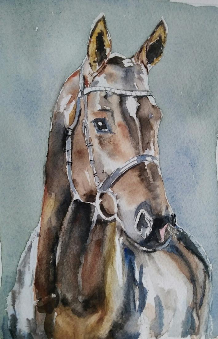 cheval annie