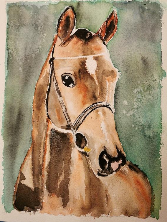 cheval mamilou