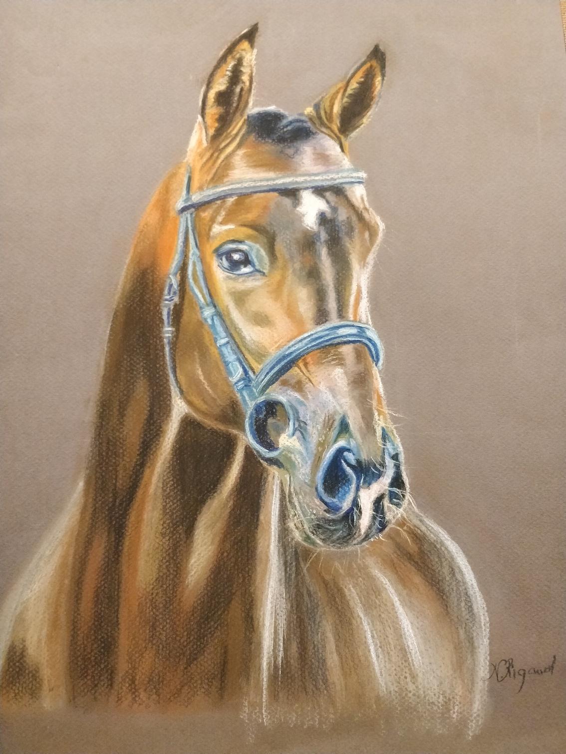 cheval natatcha