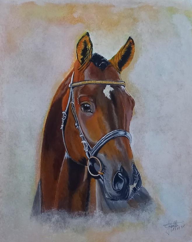 cheval soleilvie