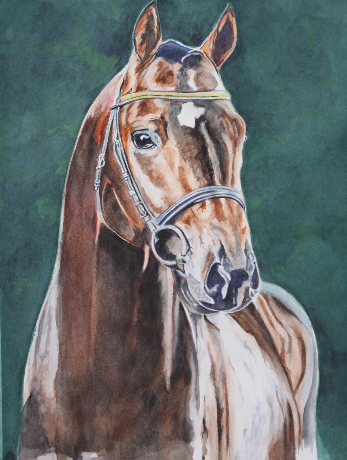 cheval stam