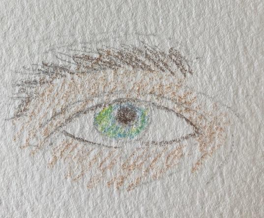 dessin oeil F 1