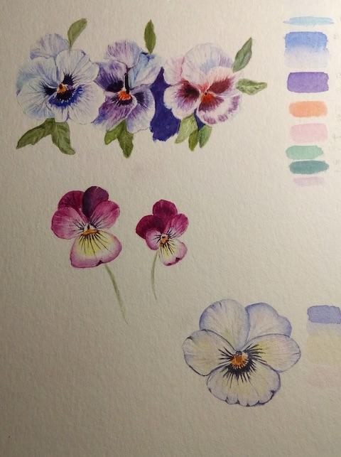 etude fleurs