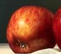 pomme gauche