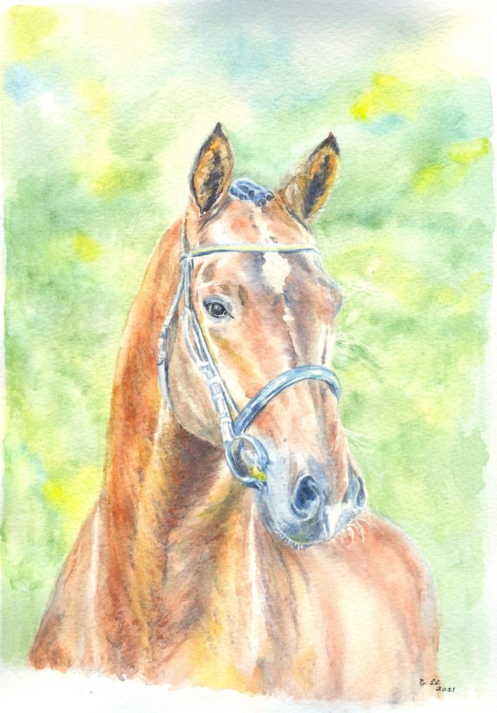TL_cheval